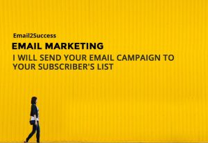 2855I will send email campaign successfully using a very friendly email service provider