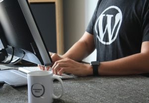 3257I will troubleshoot your WordPress issues