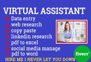 3318I will be your virtual assistant for data entry, web research, data mining etc.