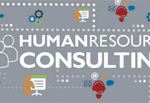 4148I will consult, do career development, business counsel, market research, and HR