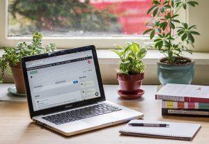 4005I will teach you how to set up a WordPress website