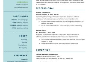 4607I will provide custom professional resume or cv writing services
